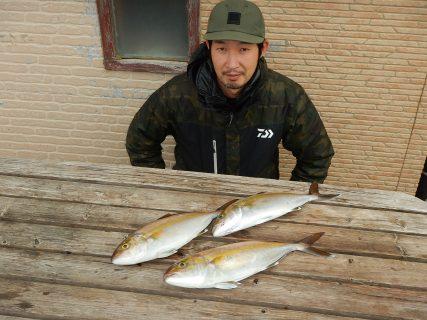 20201228 ルアー・ジギング船魚拓号