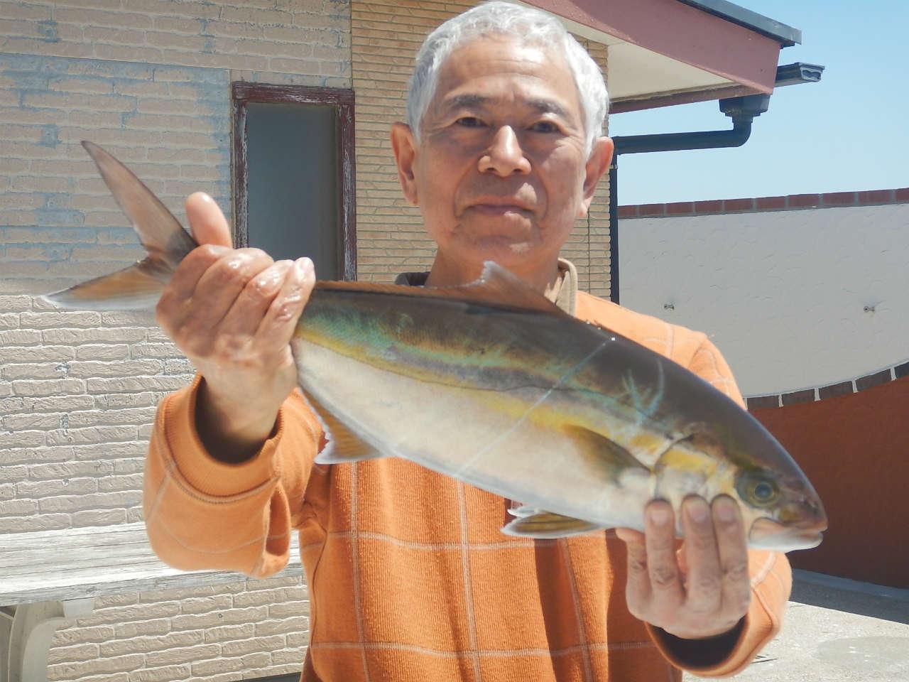 20210422 カンパチ ルアー・ジギング船魚拓号